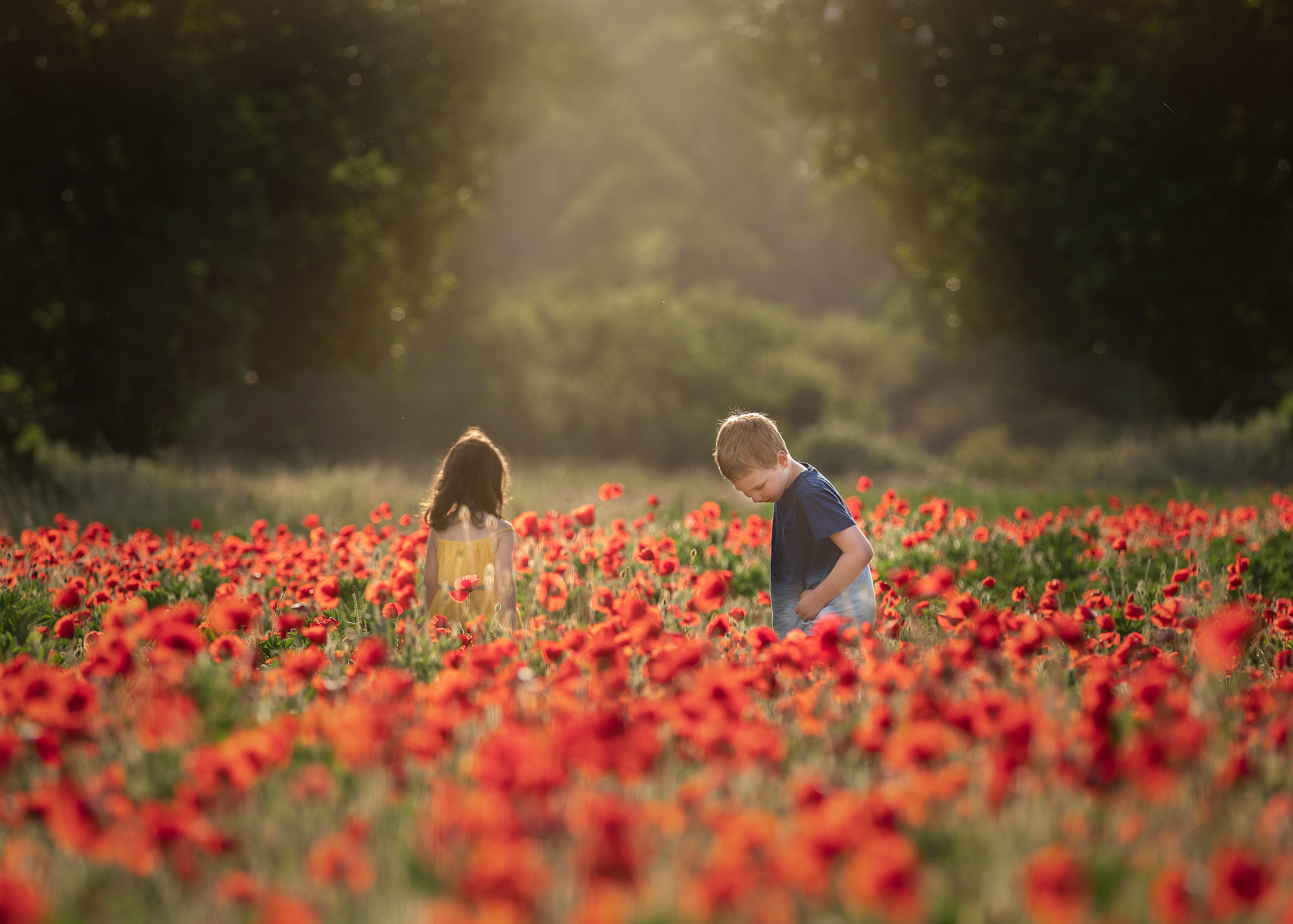 two children play in poppies