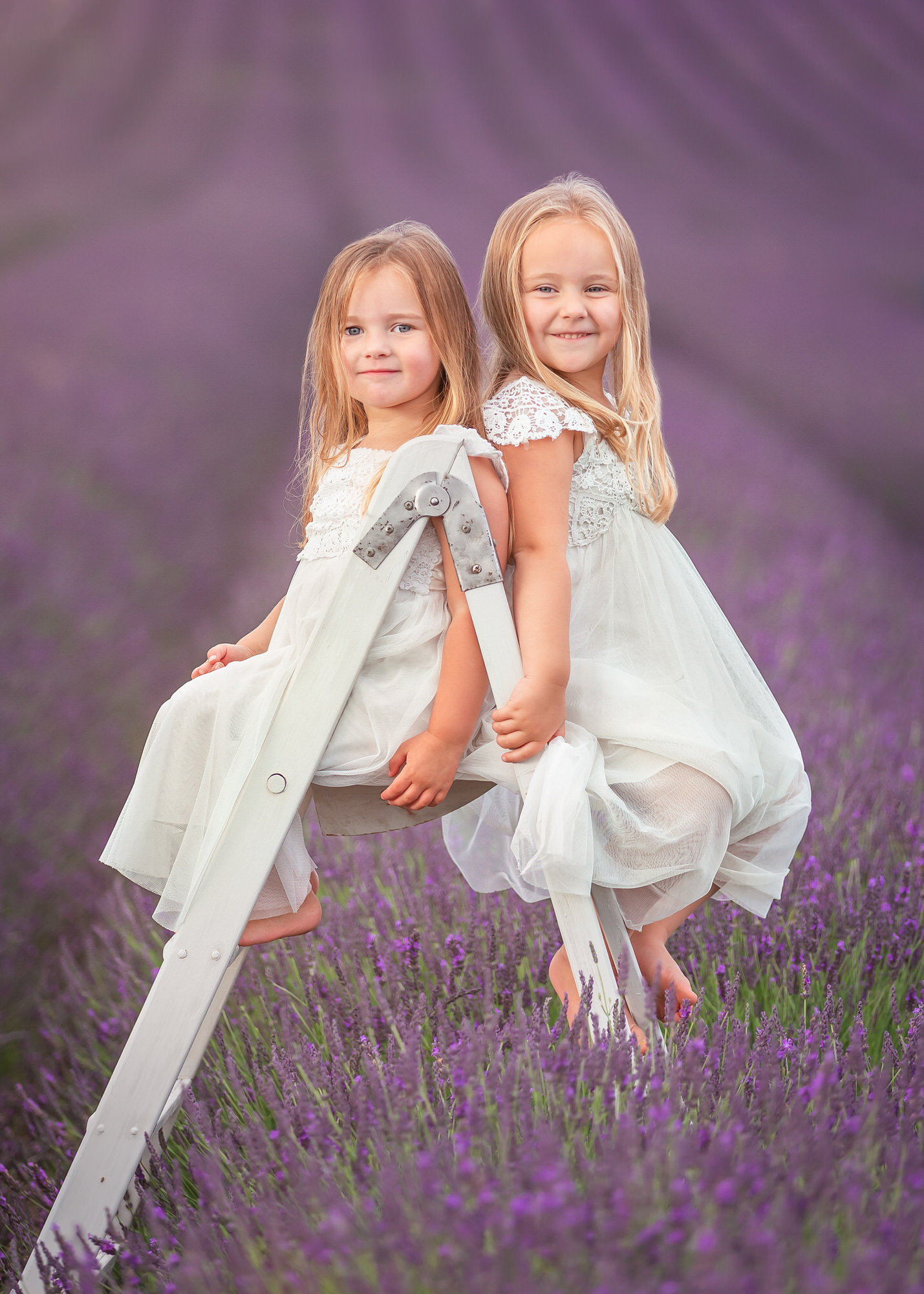 Two girls sit on a ladder at Hitchin lavender farm, at a lavender photo shoot in hertfordshire