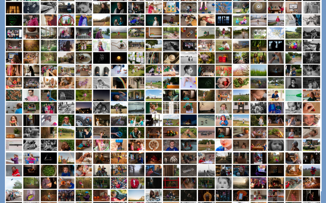 My 365 project