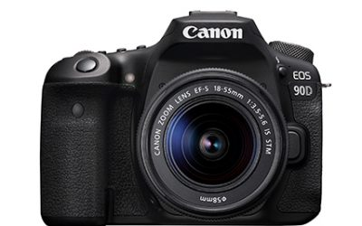Which camera should I buy as a new photographer?