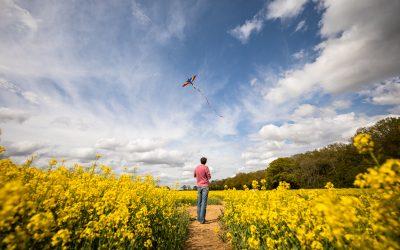 Family friendly walks in Hertfordshire: near Welwyn, Stevenage and Hitchin